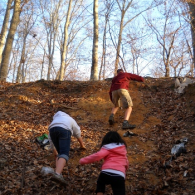 This week, Take a Child Outside